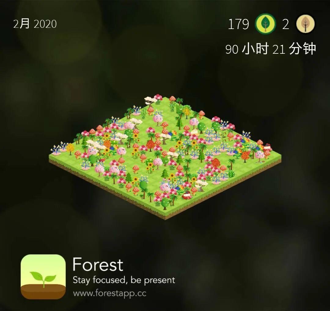 也谈 | Forest招募#天国是努力进入的#