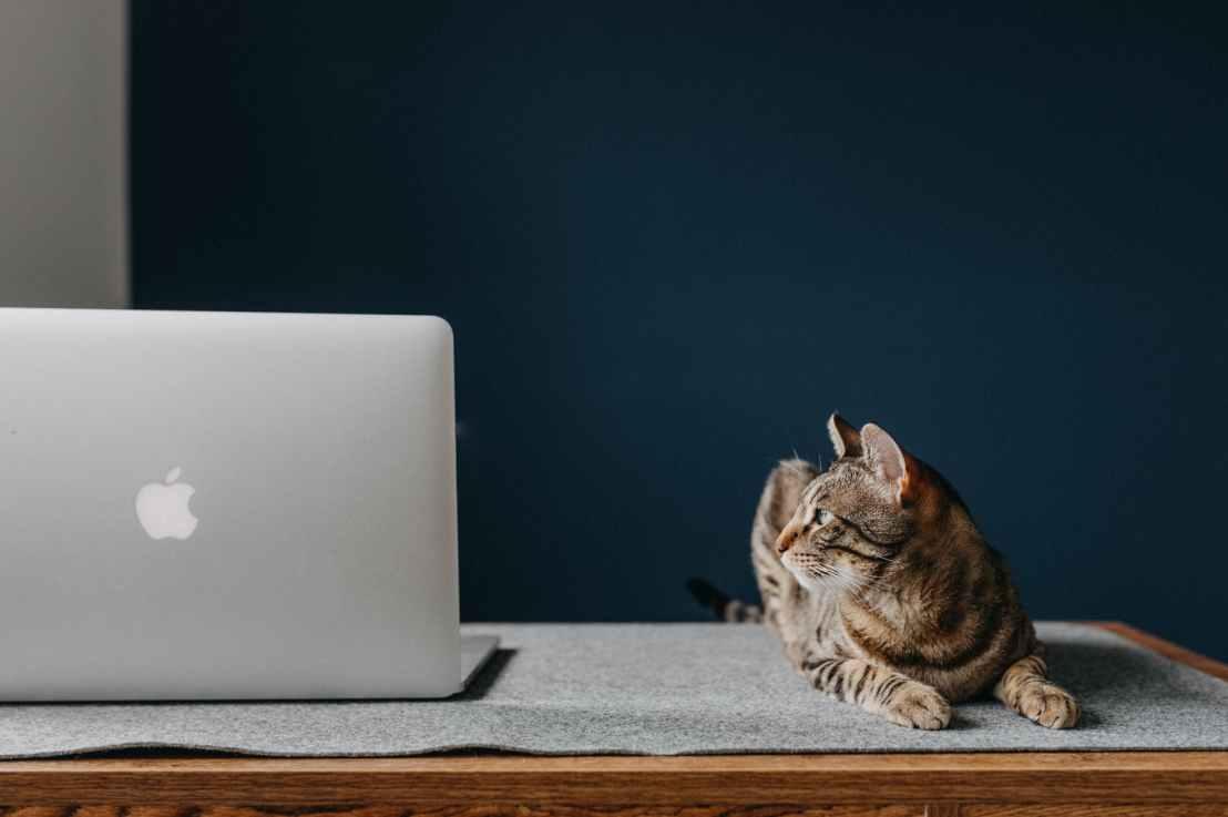 Mac:触控栏卡死时如何恢复